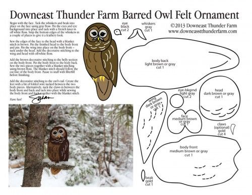 owl templates for sewing - 253 best images about noah 39 s ark on pinterest