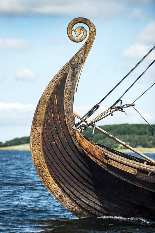 """Saga Oseberg"" at Roskilde Fjord. The first reconstruction of the Norwegian Oseberg ship sank in just 20 seconds during his first trials in 1987, no one thought afterwards that the ship was even sail skillfully. But reconstructioners from the Viking Ship Museum in Roskilde in 2006 thought that after a meticulous reconstruction, the ship could be resurrected and become able to sail."