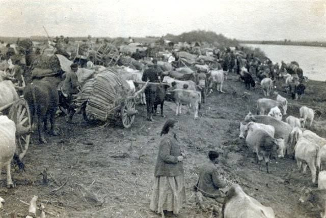 Refugees, Eastern Thrace 1922.