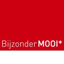 BijzonderMOOI* Online (Dutch) design At BijzonderMOOI* you can buy original (Dutch) design online.