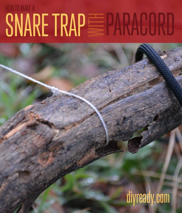 How to Make a Snare Trap with Paracord | Instructions from #DIYReady www.diyready.com