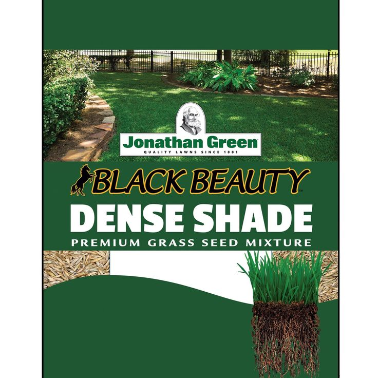 Jonathan Green Dense Shade Grass Seed, 15-Pound (15lbs) (Oak), Gardening
