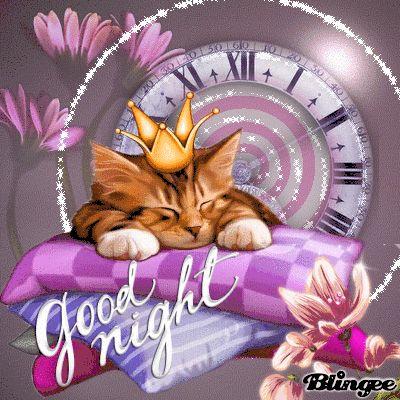 Gute Nacht. Good night.