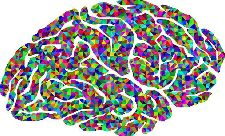 Intelligences multiples, une approche à part entière Le modèle des «intelligences multiples» est considéré comme une approche entière dans la mesure où son but ultime est d'apporter un nouveau souffle tant sur le plan de l'enseignement que sur le plan de l'apprentissage. Par ailleurs, la réussite éducative tant souhaitée par l'ensemble des acteurs de