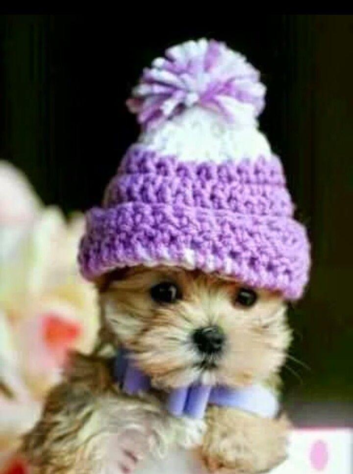 Pronto per l arrivo del freddo!!!
