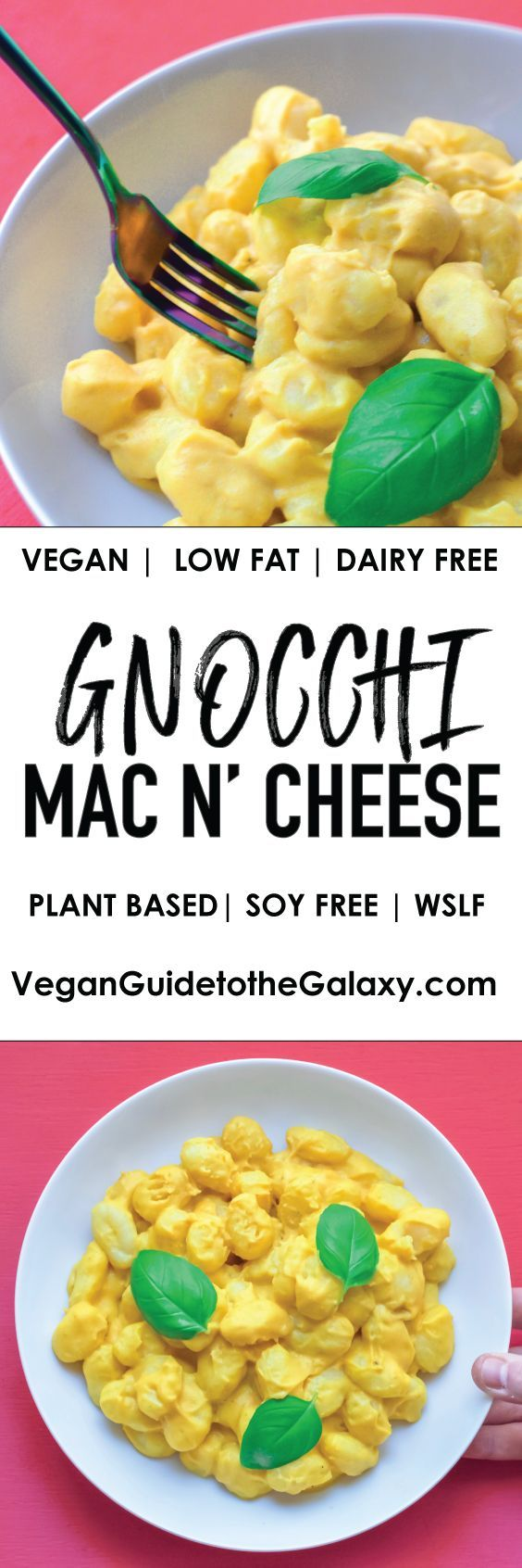 All natural and totally delicious vegan gnocchi mac and cheese with a low fat cheese sauce. Start your plant based diet off with this delicious, quick and healthy dish that can be made in under 30 minutes.
