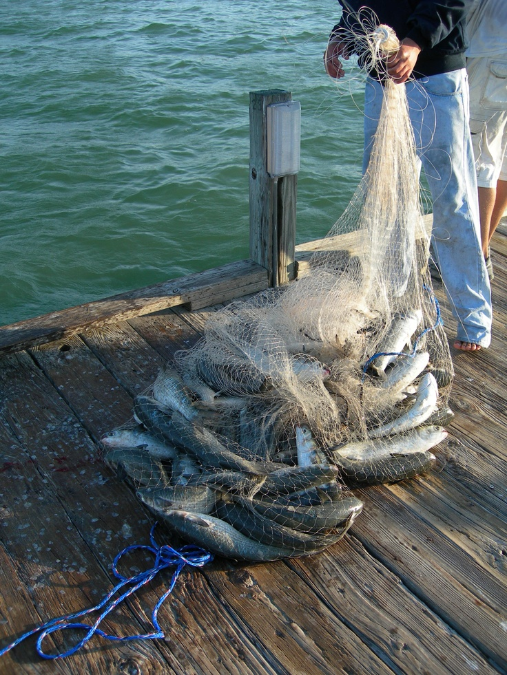 Top 25 ideas about fishing on pinterest ford trucks for Pier fishing net