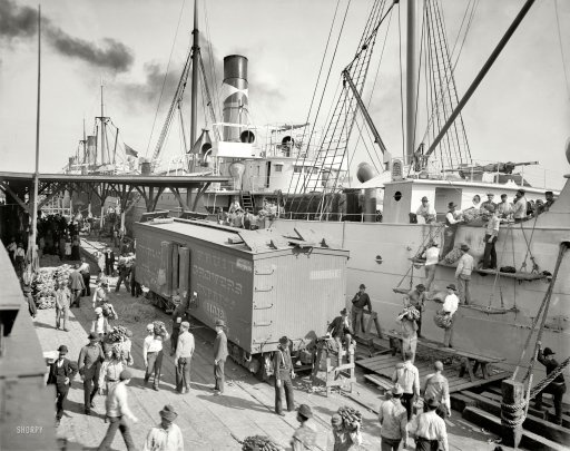 "Circa 1903. ""Unloading bananas at New Orleans, Louisiana."" An alternate view of this scene. 8x10 inch glass negative, Detroit Publishing Co."