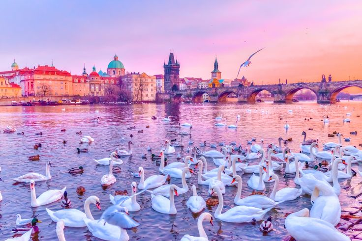 10 Excellent Reasons Why You Should Visit Prague