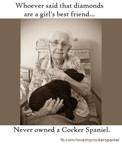 Whoever said that diamonds are a girl's best friend never owned a Cocker Spaniel.
