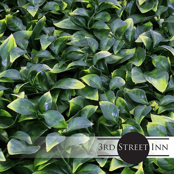 8 Best Fence Cover Images On Pinterest Artificial Hedges