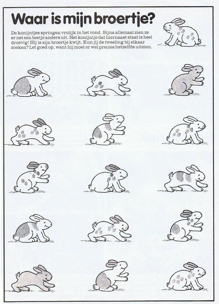 Werkblad visueel waarnemen: konijnen