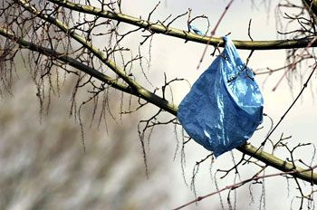 sacchetti di plastica vecchi e inquinanti,da oggi multe salate
