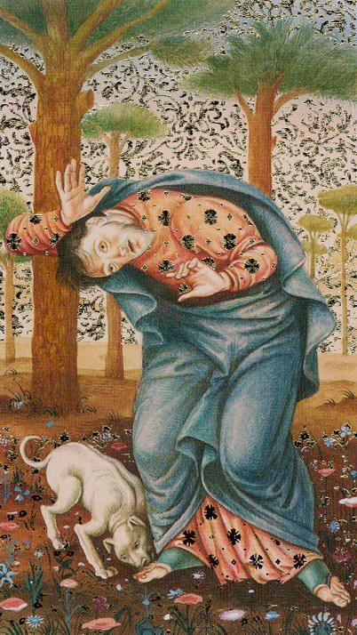 Golden Botticelli Tarot - 0 - The Fool--If you love Tarot, visit me at www.WhiteRabbitTarot.com