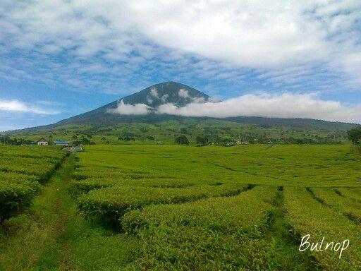 Mount Dempo - Pagar Alam