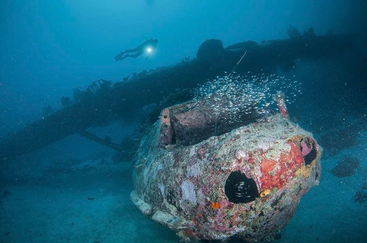 World War II bomber wreck from Biak.  It's been a while since I dove at a wreck site.  Morotai well known for it's wreck and after years of waiting tomorrow I will have a chance to meet it's beauty.  Thanks to @kemenpar for giving me the honor.  #wreck #WWII #catalina #wonderfulindonesia #wonderfulmorotai  #diving