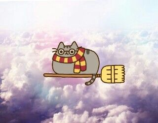 Harry Potter Pusheen❤