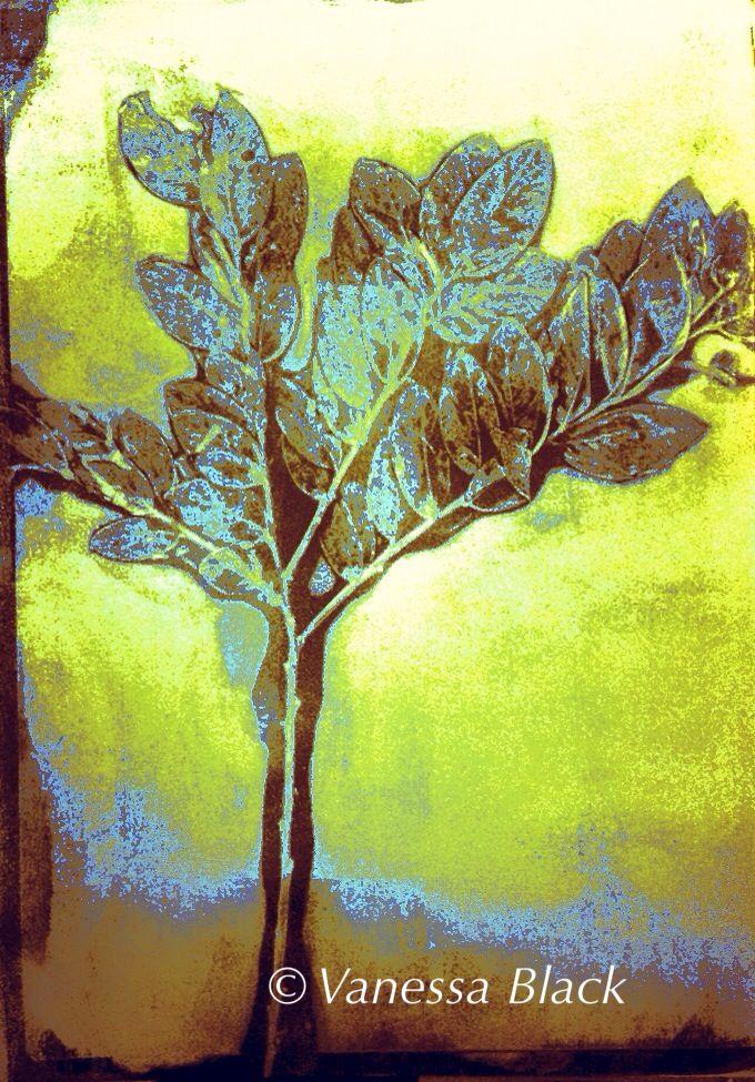Gelli + print + plant