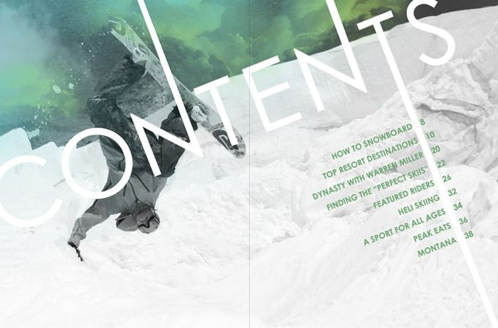 I like how part of the word 'contents' stretches off the page. Also the background picture is really cool.