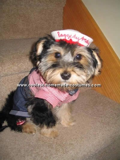 Dog Halloween Costumes The dog Halloween costumes in this section have been graciously submitted by readers like yourself. If you end up with a cool costume, or already have some cool costume photos and tips to share, send them over via this form. You can win a cool prize -