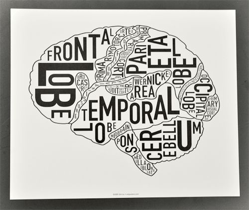 """brain diagram / neurology map. """"science + art = good things."""" by ork posters, seen at kimprints in gastown 