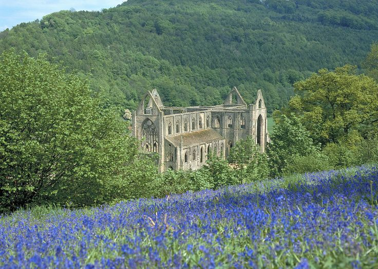 Tintern Abbey Wye Valley South Wales Historic Sites