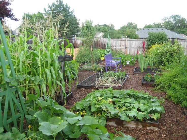 best gardens images how to garden gardening how to garden vegetables dreams gardens