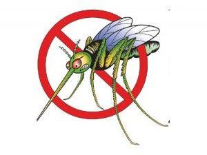 POUR EVITER  DE SE FAIRE PIQUER PAR LES MOUSTIQUES   Les moustiques sont attirés par l'odeur de notre peau,  de notre transpiration. C'est grâce à elle qu'ils nous  repèrent et nous piquent.    Après avoir pris de forte de dose de  vitamine B1 (1g par jour durant une dizaine de jour), le taux de B1 dans notre sang est tel que notre transpiration  possède une odeur perceptible seulement par les moustiques et agissant comme un répulsif puissant pour l'insecte.  Le BENERVA vendu sans…