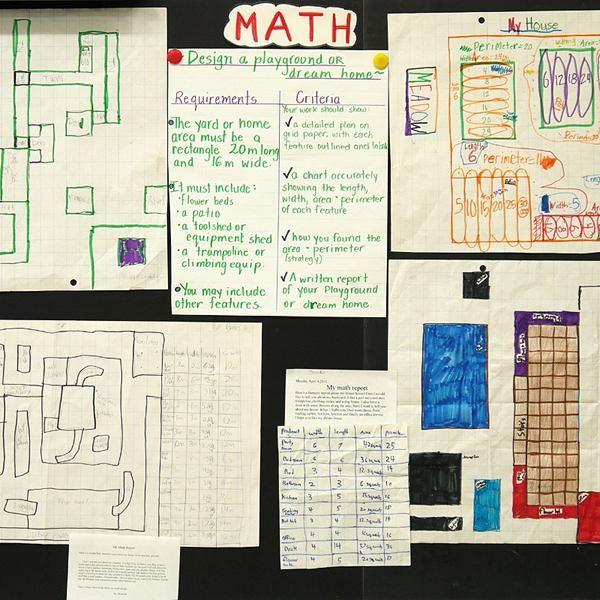 Literacy in mathematics essay