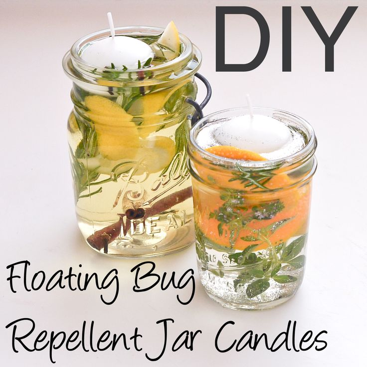 These pretty candles will chase the bugs away in your home!