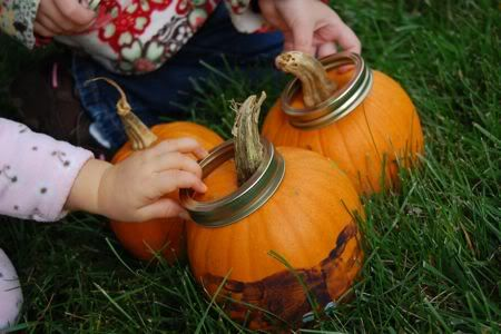 DIY Ring Toss | Clara was happy to put the canning rings over the pumpkin stems and ...