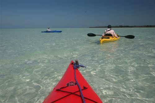 Cudjoe Key Kayaking Pinterest Keys And Florida