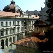 Diana Mandache: Jurnal de Istoric