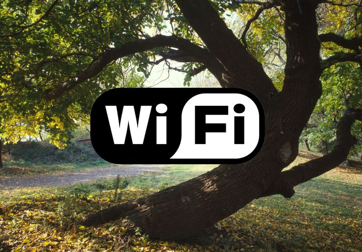Free Wifi in Parks