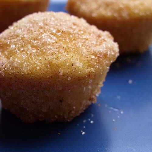 These baked donut holes made in a mini muffin pan take on a whole new flavor with a sweet spiced seasoning blend!