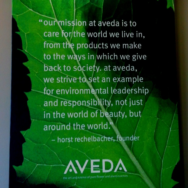 Aveda 39 s mission statement aveda cosmetology pinterest for A mission statement for a beauty salon