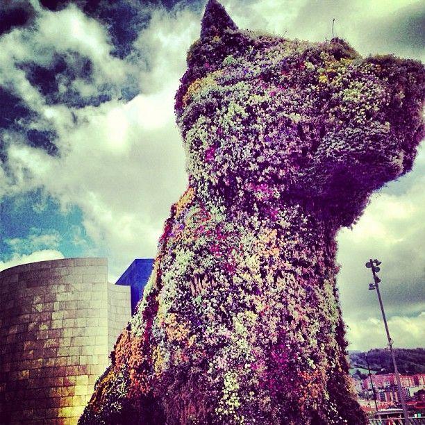 @ELLE Türkiye The Guggenheim dog.