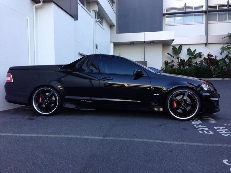 Maloo with simmons