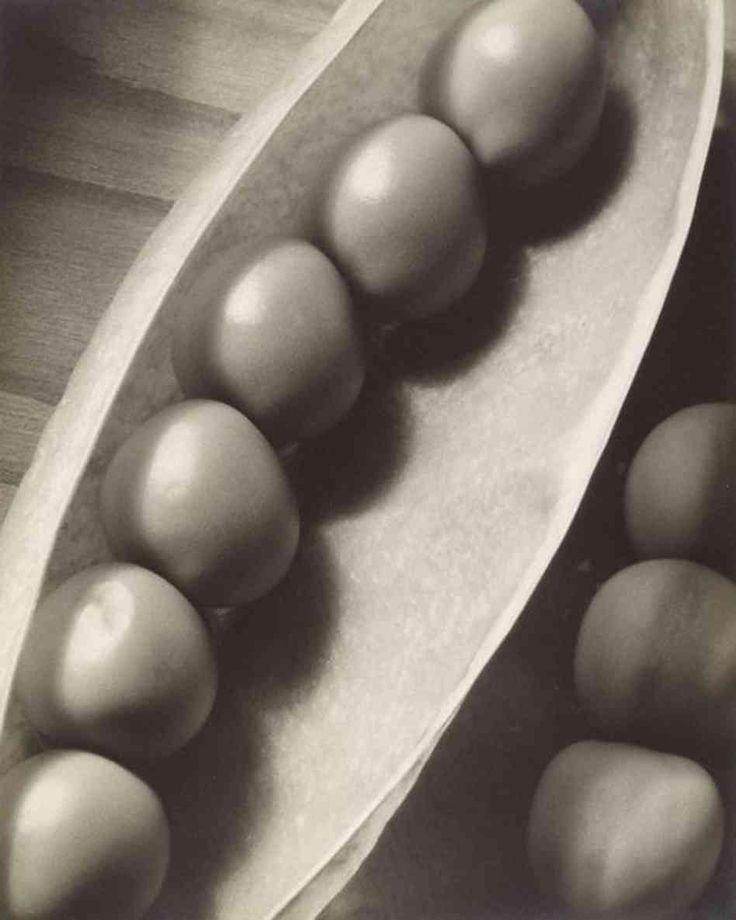 Edward Weston - Google-Suche