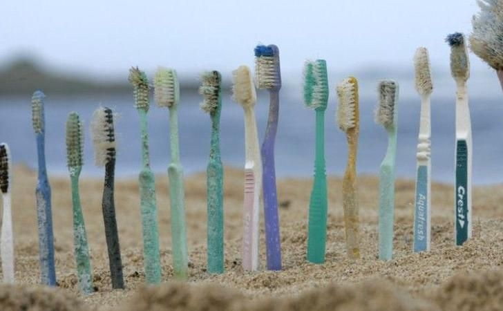 Toothbrushes found during a beach clean up | Beach clean up, Hair  accessories, Clean beach