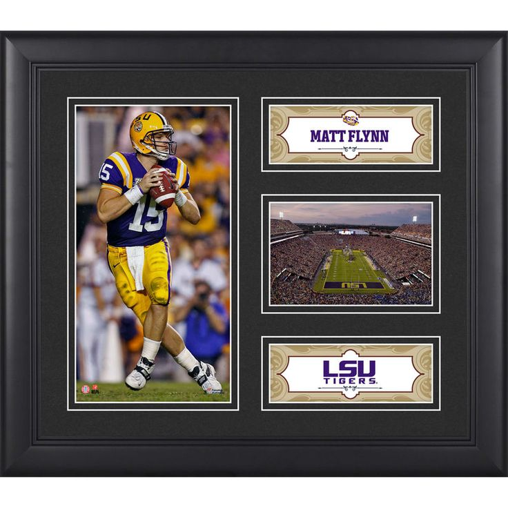 "Matt Flynn LSU Tigers Fanatics Authentic Framed 15"" x 17"" Collage"