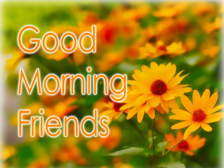 Best 25 Morning Quotes Ideas On Pinterest: 25+ Best Ideas About Best Good Morning Messages On
