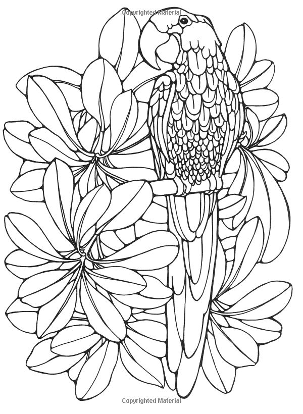 Comfortable Fashion Coloring Book Tall For Colored Girls Book Square Creative Coloring Books Dia De Los Muertos Coloring Book Old Hello Kitty Coloring Books DarkMosaic Coloring Books 520 Best Malebog Images On Pinterest   Coloring Books, Coloring ..