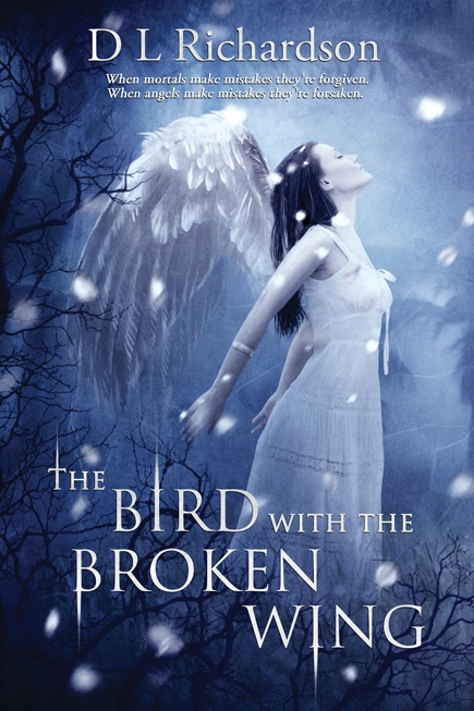First novel cover art The Bird With The Broken Wing
