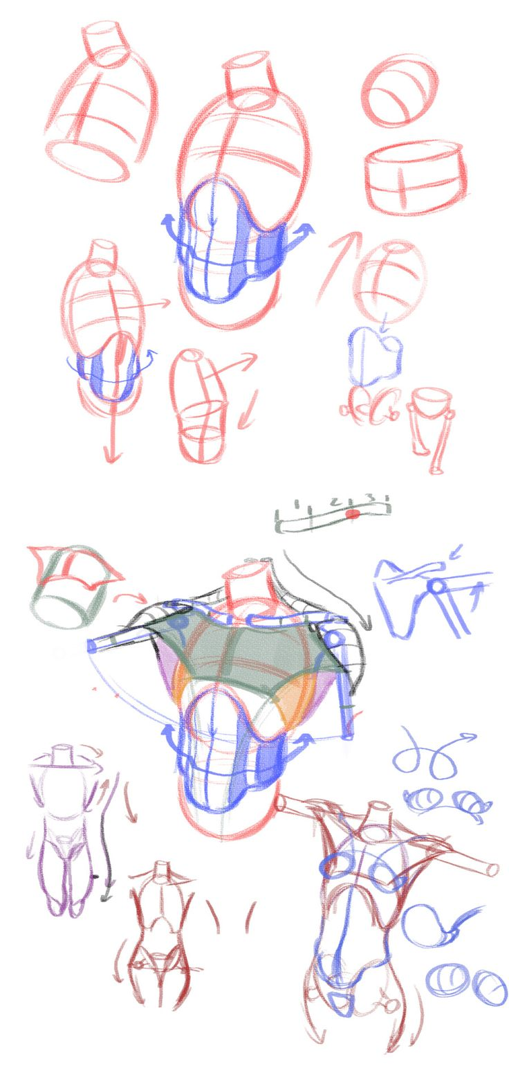 radfordsechrist: You can sign up for Construction... - Art References