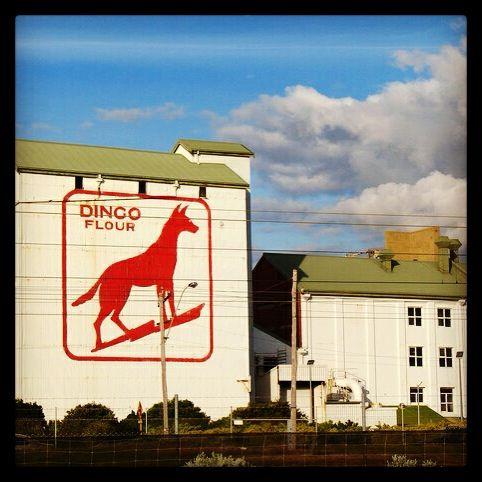 Perth Icon. Dingo Flour.
