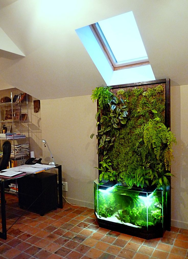 Best 25 diy aquarium ideas on pinterest amazing fish tanks best fish tanks and best aquarium - Mur vegetal interieur diy ...