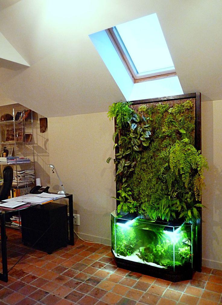 mur végétal intérieur en aquaponie