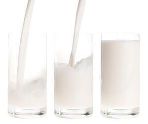 Banting Diet and Dairy