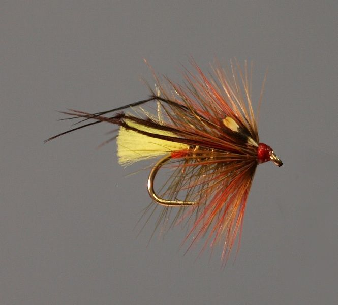 Pin by mark thompson on writers secret society pinterest for Fly fishing sale